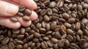 珈琲豆と手